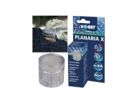 planaria-x-piege-a-planaires-hobby